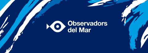 Dia Mundial dels Oceans a la plataforma Observadors del Mar