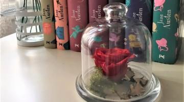Ram de Flors i Llibre per Sant Jordi a BaseTIS